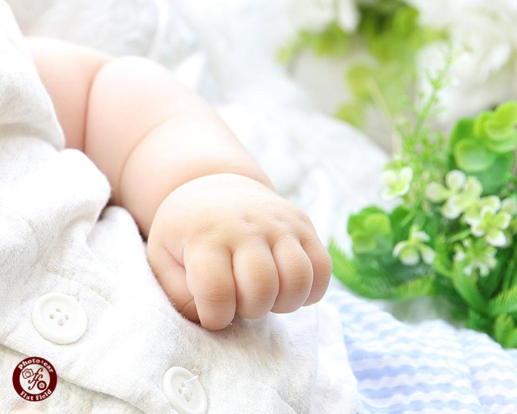 赤ちゃんフォト 880円