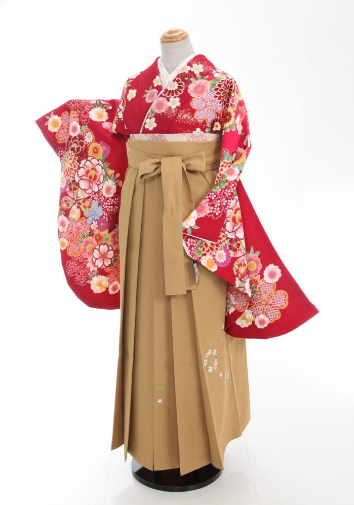 いよいよ明日から卒業袴衣装展を開催いたします。